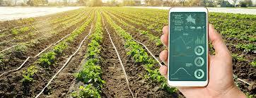 UFCD 2889 - Gestão da Empresa Agrícola