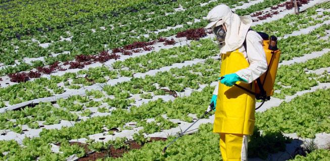 UFCD 6366 - Segurança e Saúde no Trabalho Agrícola